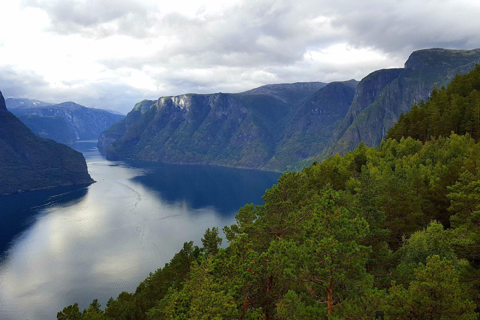 panorama su fiordo, norvegia