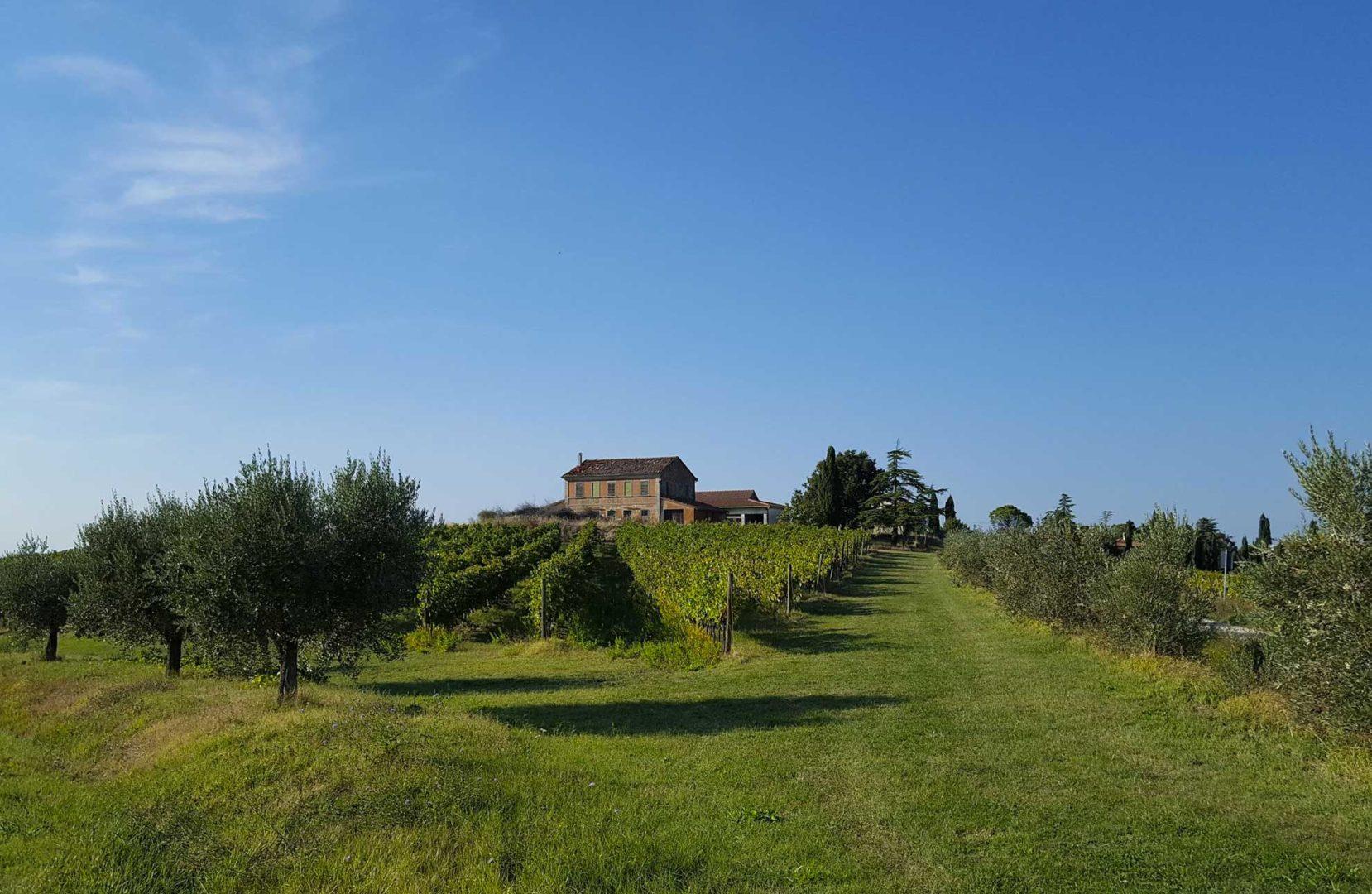 colline della riviera romagnola