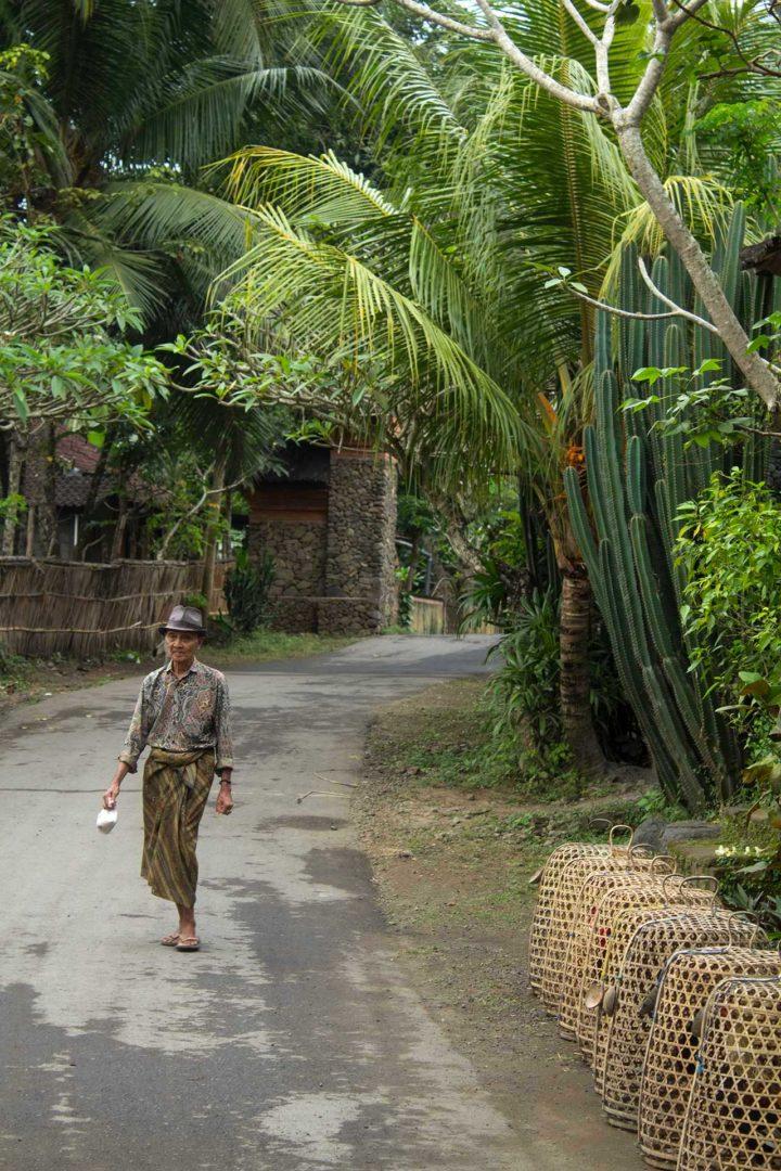 indonesia, bali, villaggio tradizionale