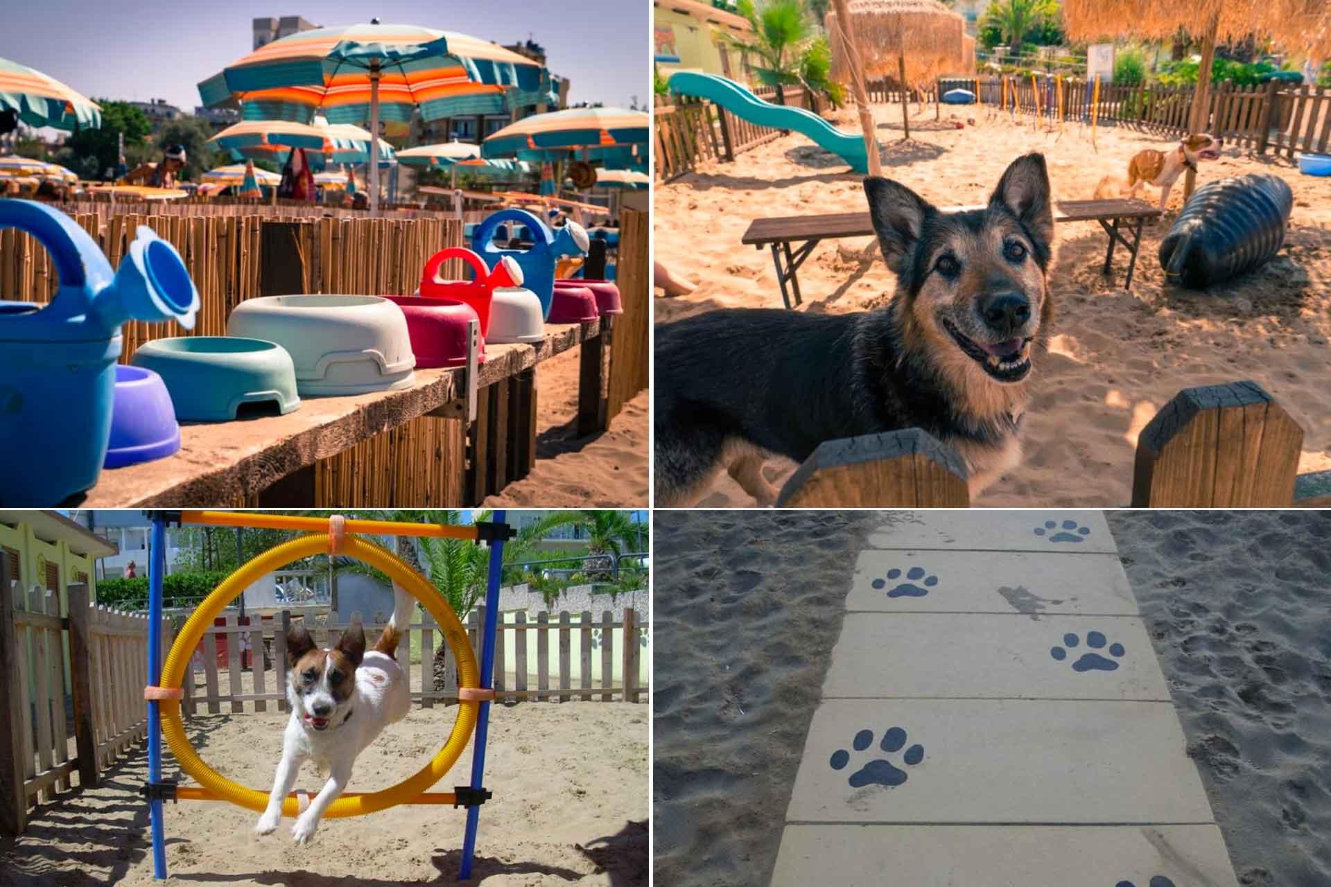 rimini vacanze con il cane
