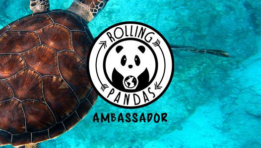 Intervista su rollingpandas.it a Sab, autrice del blog My Trolley Blog, sul viaggio ideale