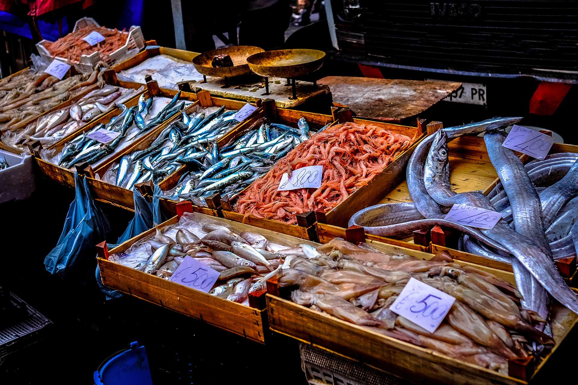 catania_ mercato del pesce